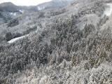 201001094_snow