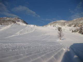 201001171_snow