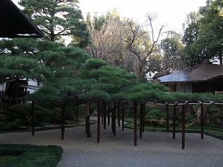 角屋の庭園