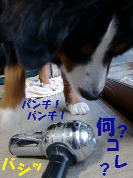 こいつめ~!銀色の変なもの~!!