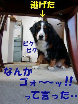 いきなりゴォ~ッって!!