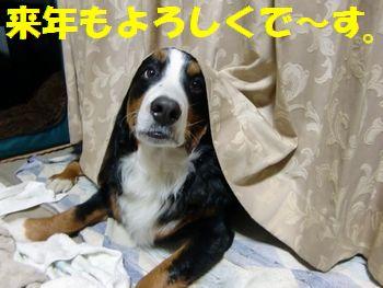 寝る前のご挨拶~!!