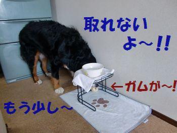 がんばっても無理なの~!!
