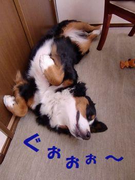寝ている時は楽カッコなんです~!!