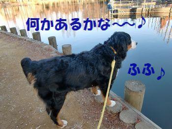 楽しいね~♪沼って♪
