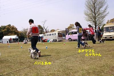 IMG_7775.jpg