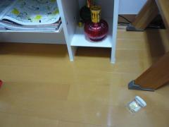 001_20110129170449.jpg