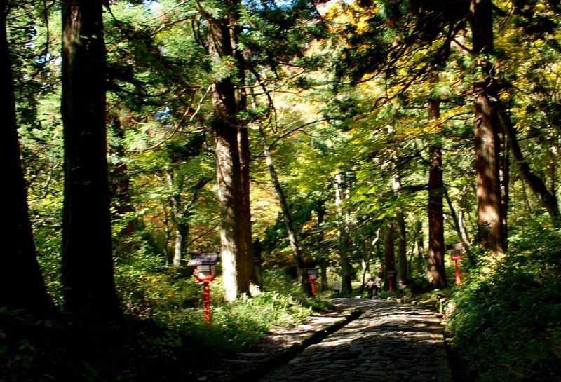 自然石歩道-1