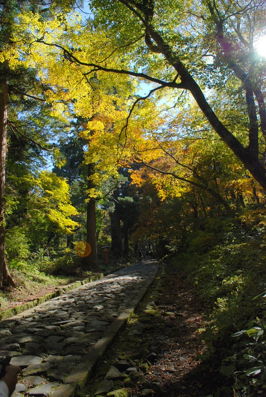 自然石の遊歩道