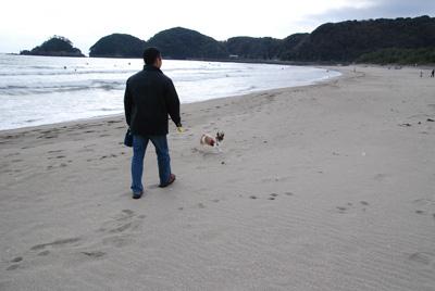 砂浜を歩くと…