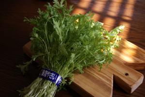 鎌倉 野菜