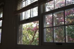 2010.04.20 窓辺の木々