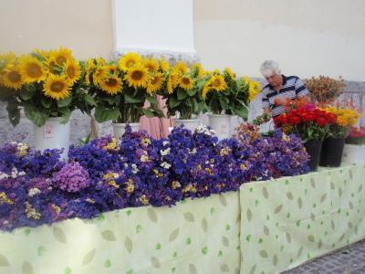 2010.8.9 リュブリャーナ 花屋