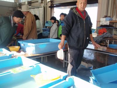 2010.11.28 江の島漁港 朝市1