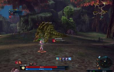 TERA_ScreenShot_20111229_051011.jpg