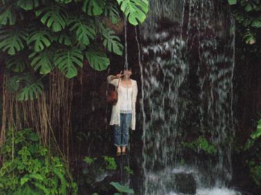 夢の島熱帯植物館④