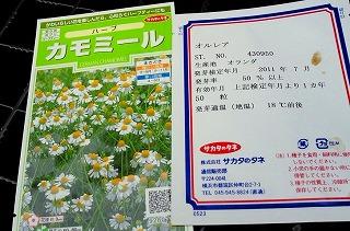 110925tanemaki2.jpg