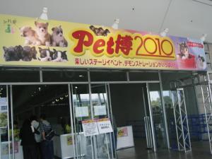 20100505-1.jpg
