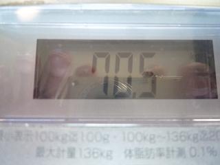 P1250480.jpg