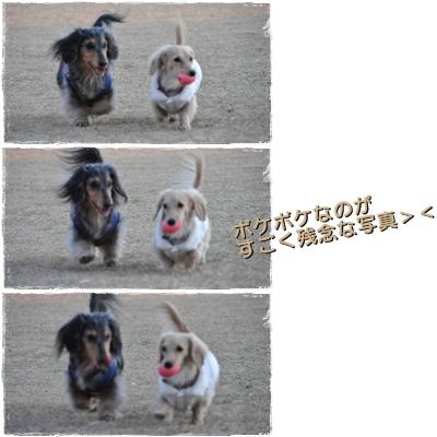 20110110-14.jpg
