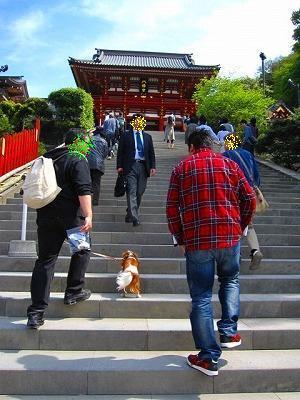 階段ダーッシュ!