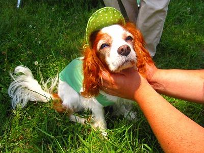 緑の帽子が似合ってます!