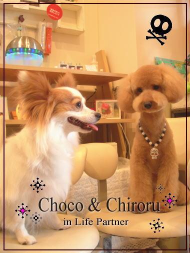choco&chiroru