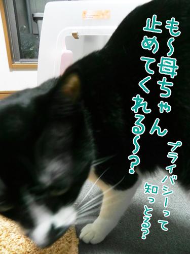 0513_5.jpg