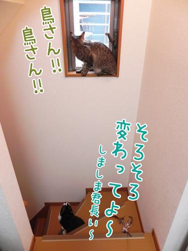 0520_7.jpg
