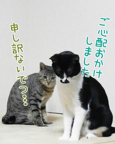 0603_1.jpg