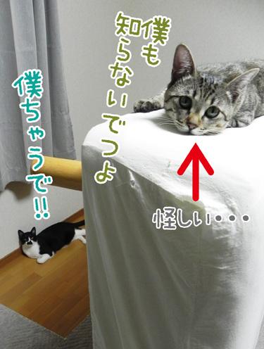 0711_5.jpg
