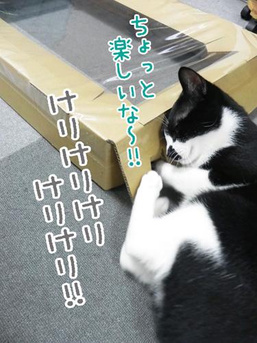 0713_2.jpg