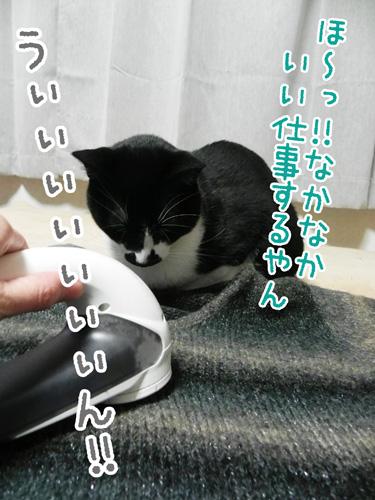 111215_3.jpg