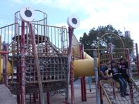 DSCF6526.jpg