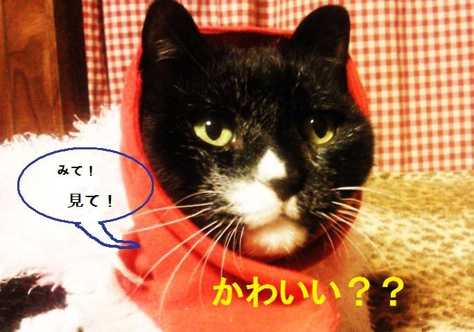 落書き済み 猫村さん