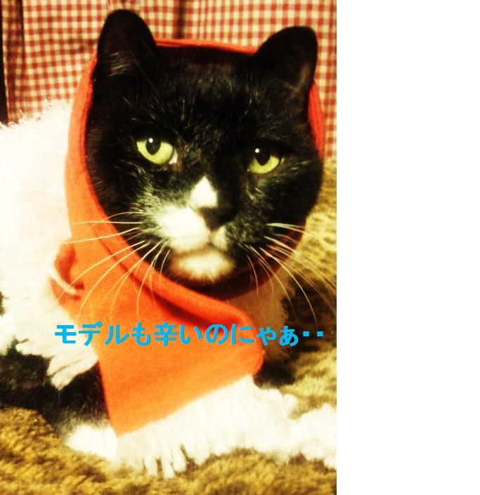 落書き済み猫村さん2