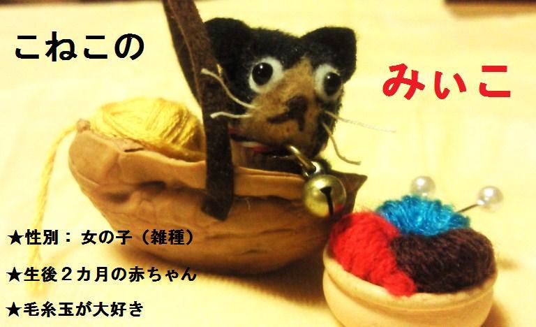 みぃこ1-1