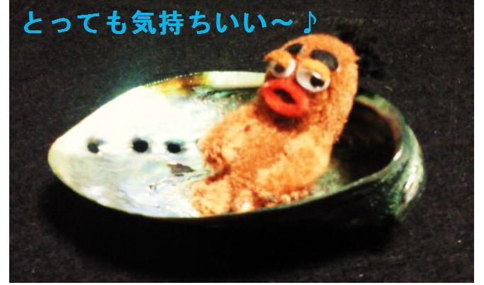 パウアとびすきぃ②★