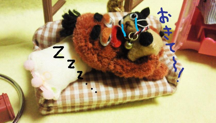 寝ないで~★