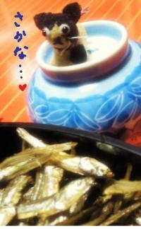 みぃこと魚#9829;