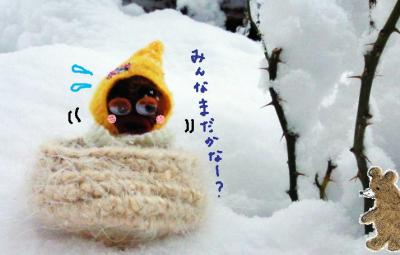 雪に埋まるびすきぃ#9829;