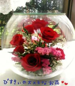 びすきぃの大好きなお花#9829;