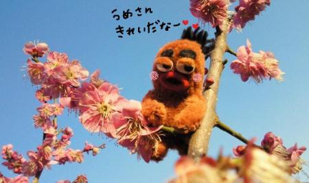 びすきぃと梅の花4#9829;