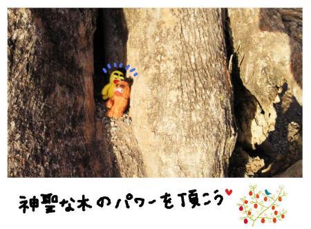 神聖な木#9829;