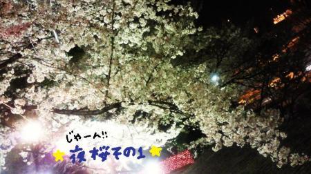 夜桜2#9829;