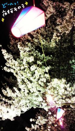 夜桜#9829;