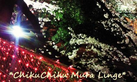 小牧山桜まつり5#9829;