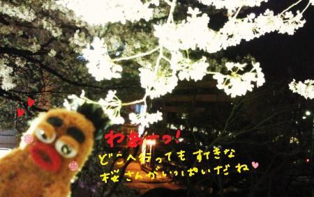 びすきぃと桜3#9829;