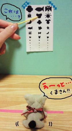 くるみちゃんの視力検査#9829;