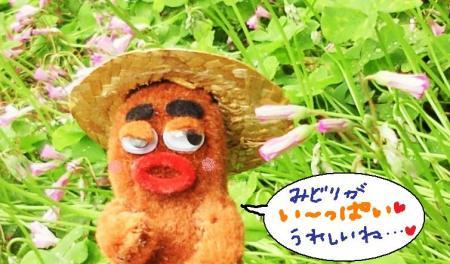 びすきぃとカタバミさん#9829;